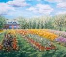 Experimental Farm Gardens Ottawa