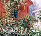 Hobbs' Garden