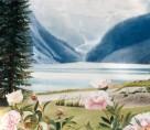 Lake Louise Banffe Alberta
