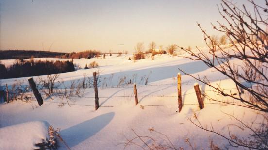 winter-scene2_kevin_web